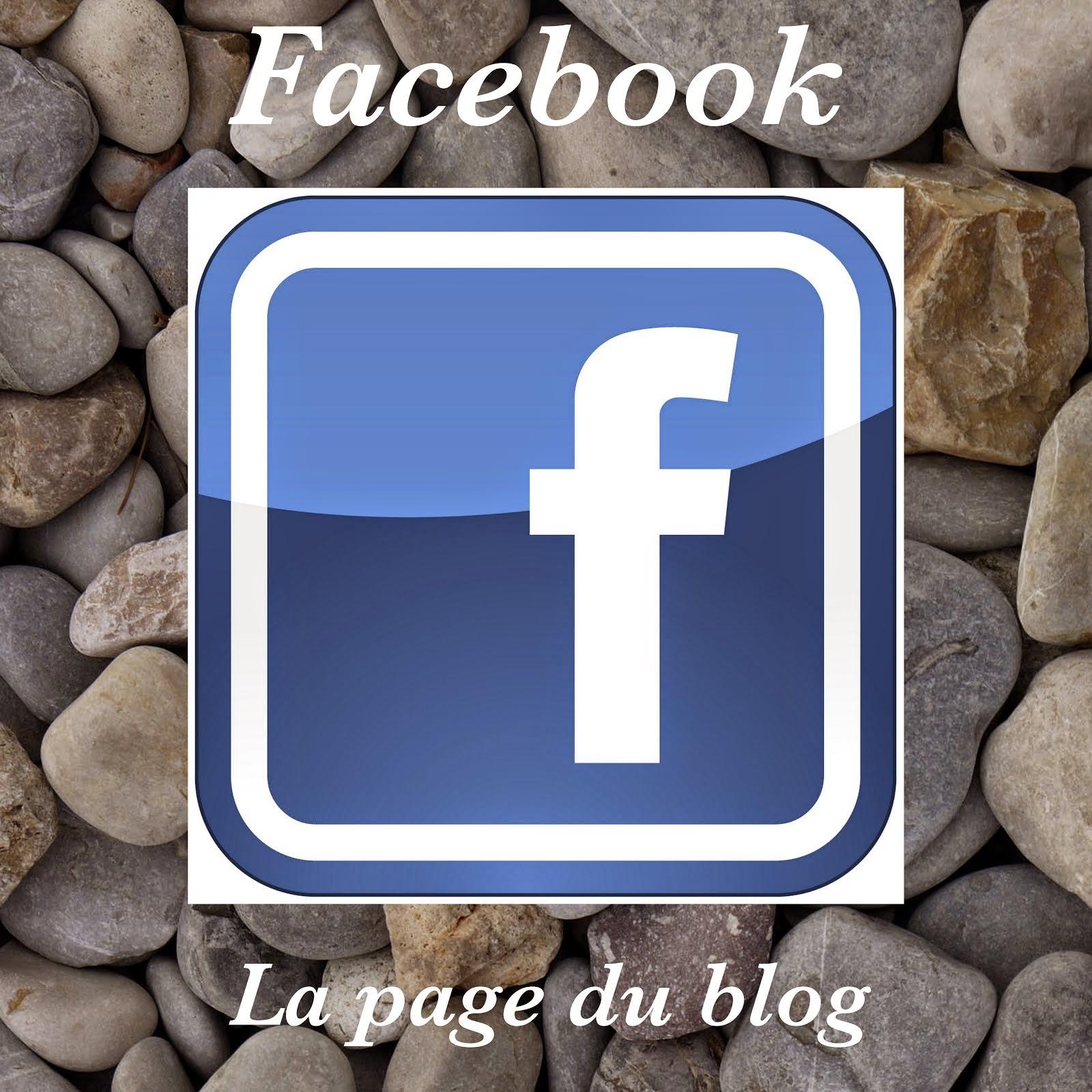 Suivre le blog sur Facebook