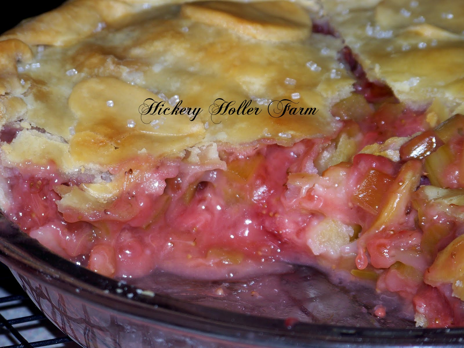 Hickery Holler Farm: Strawberry Rhubarb Pie In A Bag