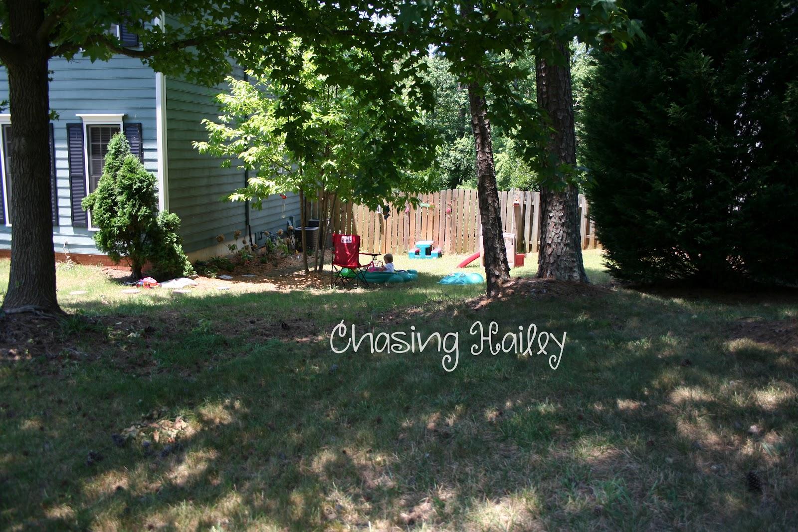 Chasing Hailey Hailey 39 S Garden