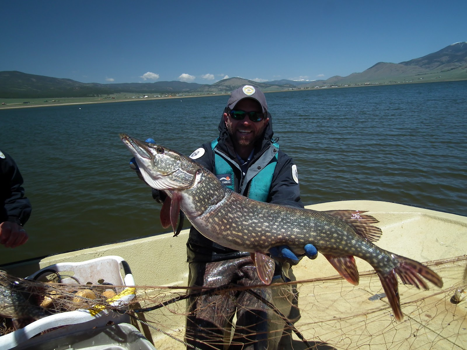 Outdoors nm eagle nest the hot spot for pike fishing this for Utah game and fish