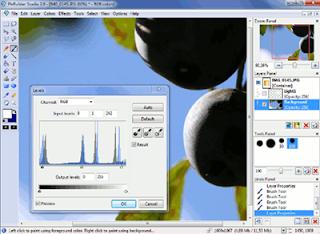 Free software edit foto gambar gratis terbaru
