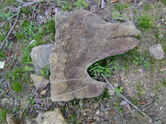 Pedra Exótica