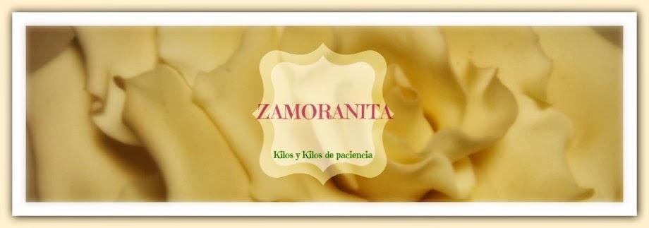 ZAMORANITA. tartas espectaculares de fondant en Zamora