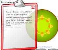 e-Learning Fungsi Batang Pada Tumbuhan