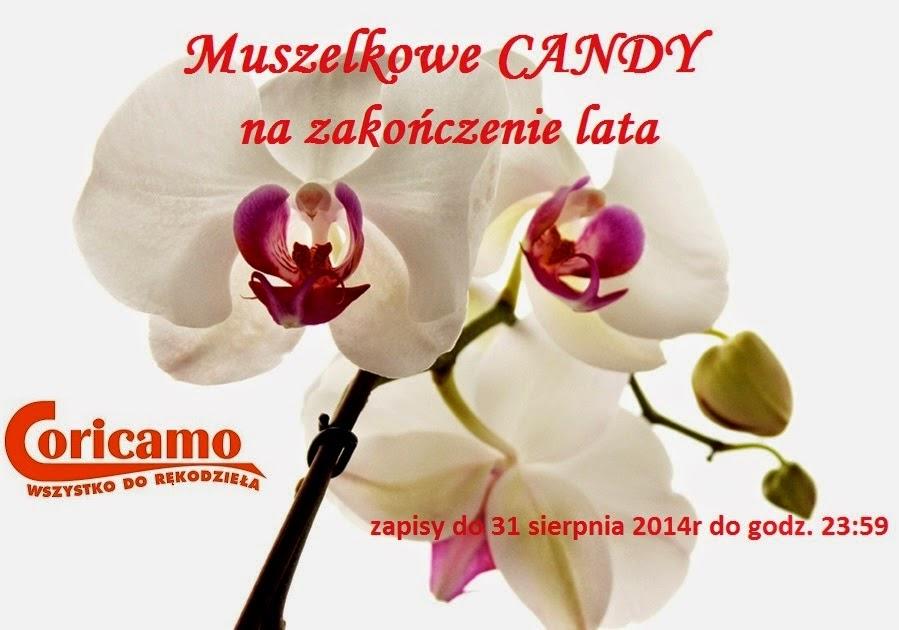 Muszelowe Candy