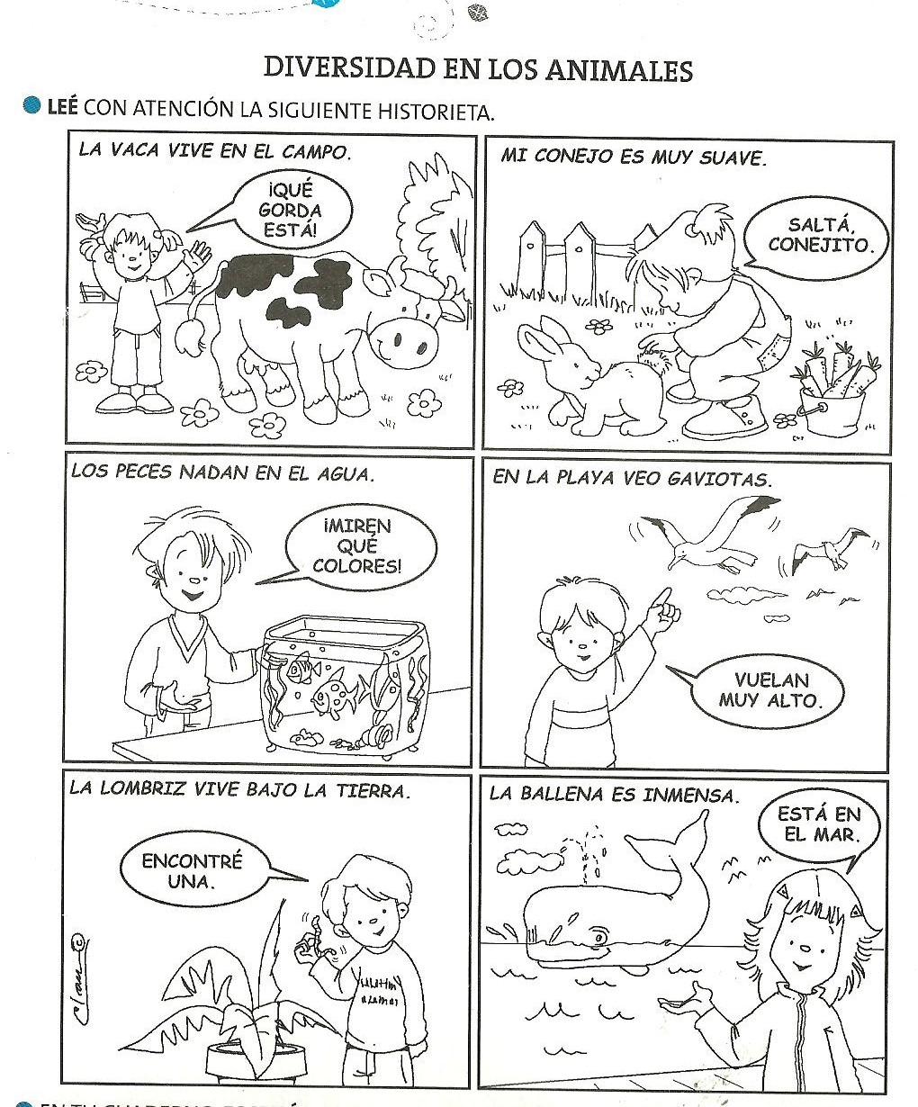Dibujos de animales carnivoros herbivoros y omnivoros para ...