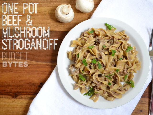 15 Easy Meal Planning Meals :: OrganizingMadeFun.com -- One Pot Beef & Mushroom Stroganoff