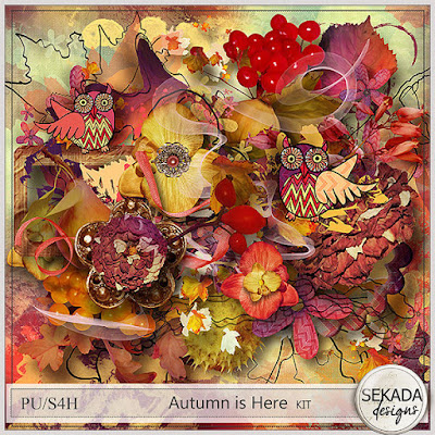 http://www.digitalscrapbookingstudio.com/sekada-designs/?sort_by=timestamp&sort_order=desc&layout=products_multicolumns&page=2
