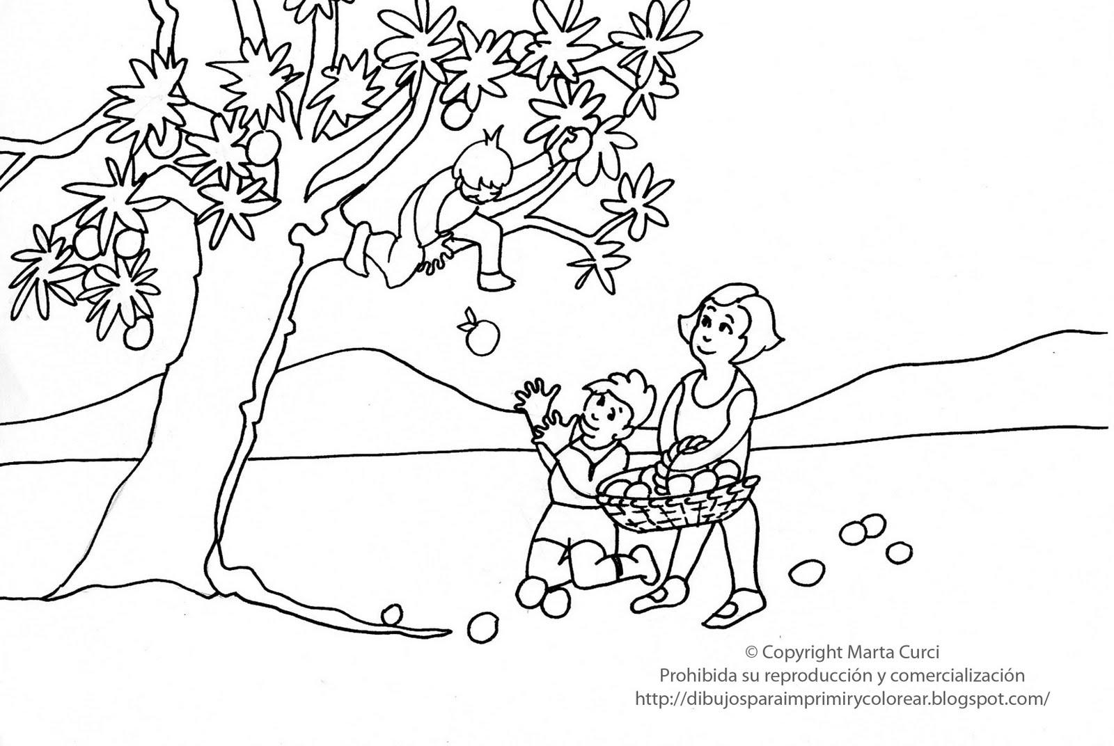 Encantador Placa De Frutas De Manzanas Para Colorear Página De ...