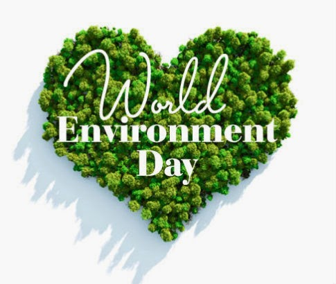World Environment Day Slogans.Save Environment Essay In Hindi Image