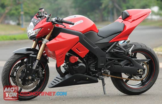 Naked Ninja | Kawasaki Ninja 250 RR 4 Stroke Naked