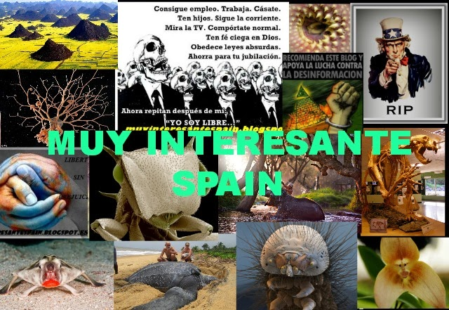 MUY INTERESANTE SPAIN