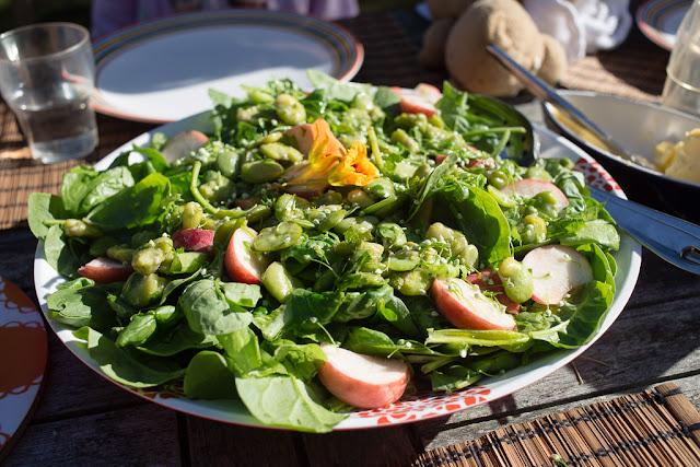 härkäpapu, kuorittu, salaatti