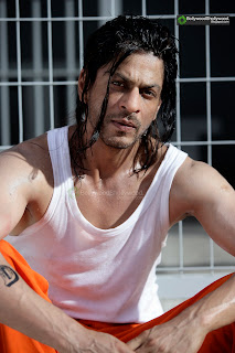 movie don 2