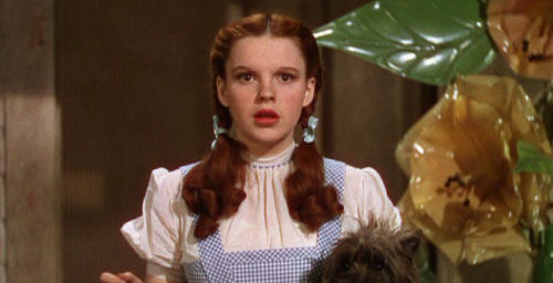 Hamchuckles d is for for Dorothy gale