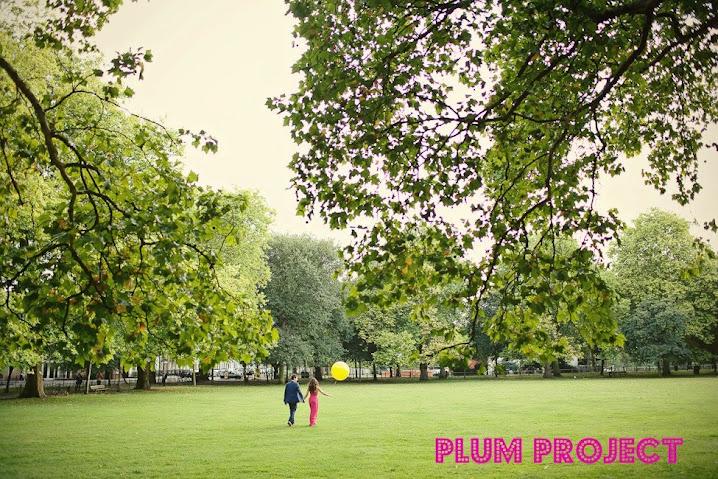 Plum Project