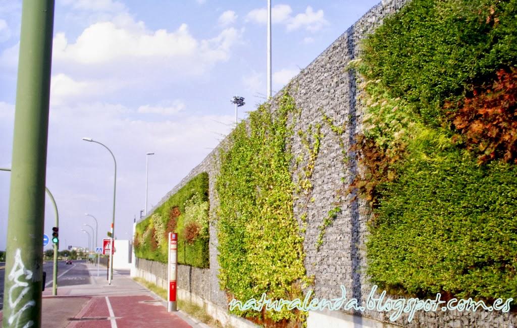 composición jardines verticales emt