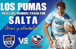 Con dos encuentros de primer nivel, Salta recibe a Los Pumas