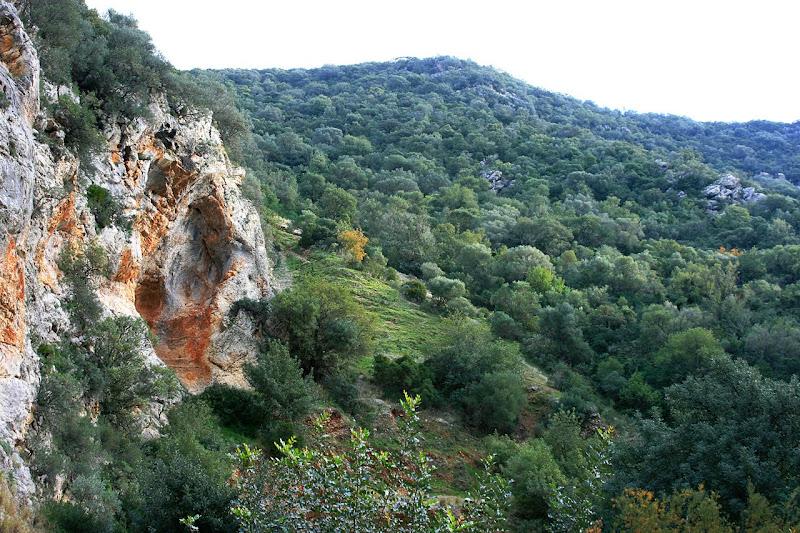 Montes de Jerez