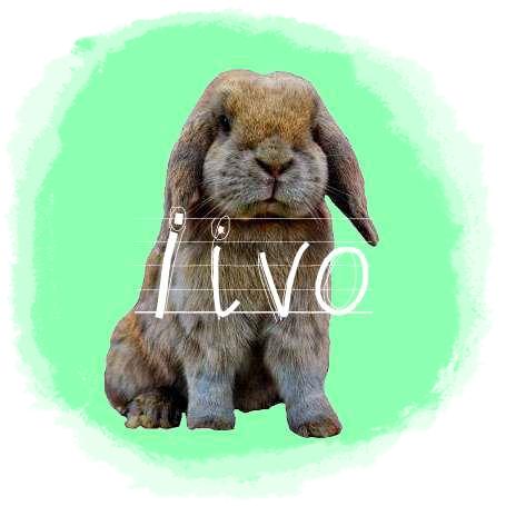 http://rabbitrubbish.blogspot.fi/p/iivo.html