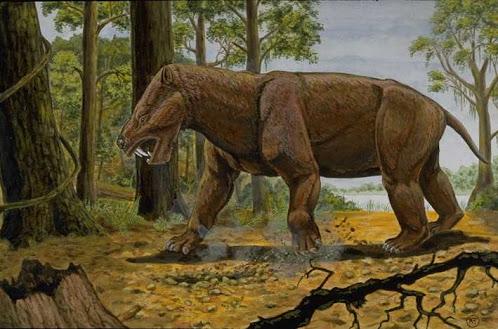 paleocene mammals Titanoides