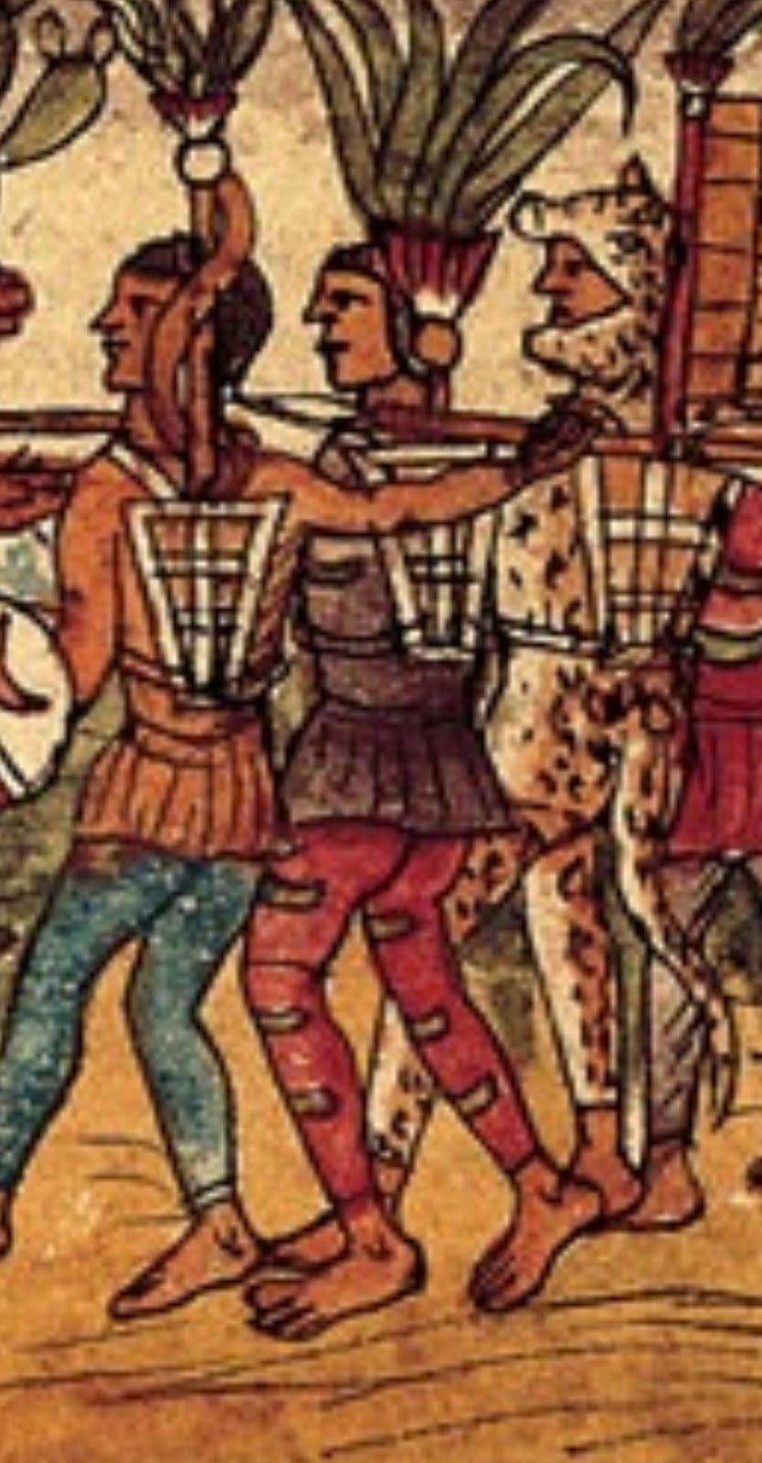 El aspecto letrado de Bernal Díaz del Castillo