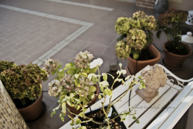 My Home : Luce dal cortile - shabby&countrylife.blogspot.it
