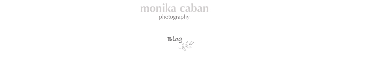 Monika Caban photography: Michigan Wedding & Portrait Photographer