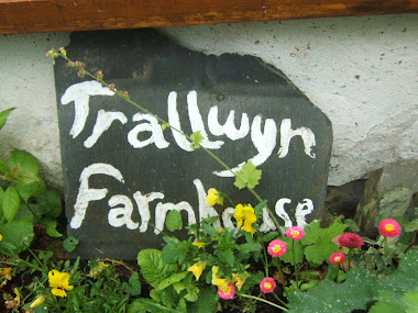 trallwyn - wales cottages [click pic]