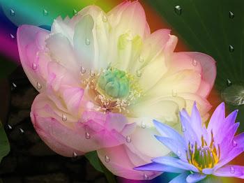 Las flores son a la vista lo que la música es a los oídos...