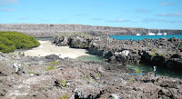 Tidal Pools Adjacent to Darwin Bay, Genovesa Island, Galapagos