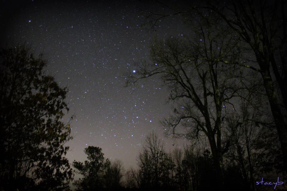 Ngôi sao sáng Sirius trong chòm sao Canis Major (Đại Khuyển), cụm sao M41 trong hình là một vệt mờ ảo bên dưới phải sao Sirius. Tác giả : Stacy Oliver Bryant.