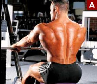 كل ما يجب ان تعرفة عن تمارين عضلات الظهر
