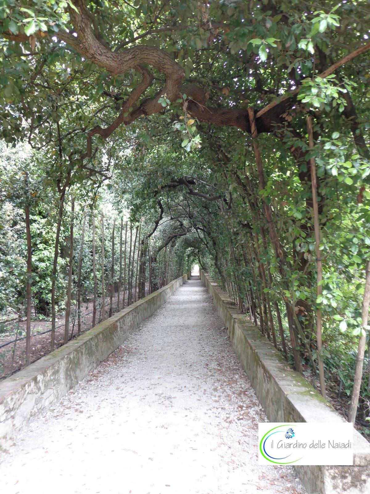Il giardino delle naiadi parchi storici il giardino di - Giardini decorati ...