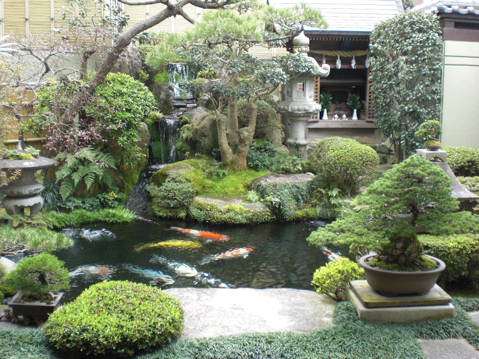 japanese water garden koi pond with waterfall this is absolutely zen a must have mrsilverscott mrdrewscott pinmydreambackyard pinterest japanese