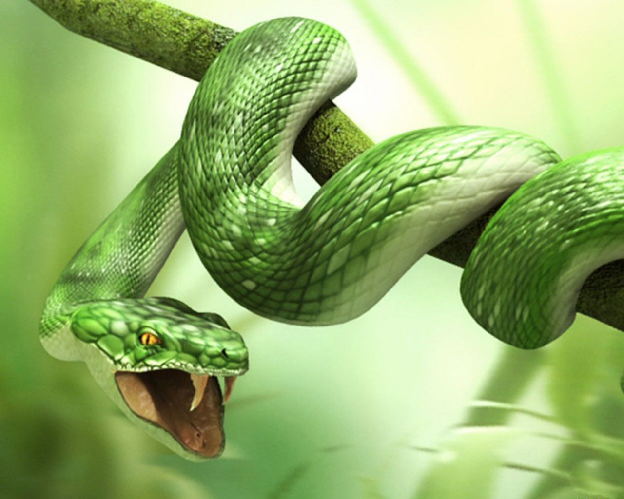 http://2.bp.blogspot.com/-jfwlQVBNdzQ/UCOc1OhCdcI/AAAAAAAABDU/QZjpTP4J_n4/s1600/3d_wallpaper-animals_Snake.jpg