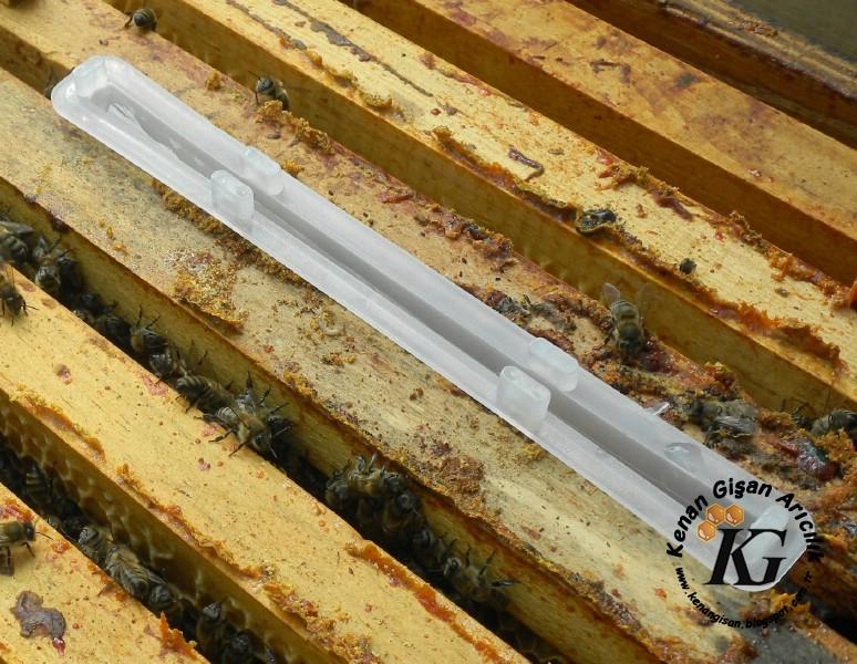 Formik Asidin Varroa İçin Kullanılması 2 (Plastik Aparat ile)