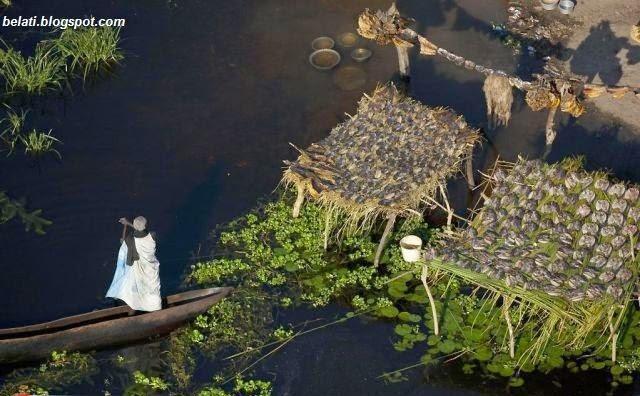 Uniknya Rumah-rumah Terapung Di Negara Sudan