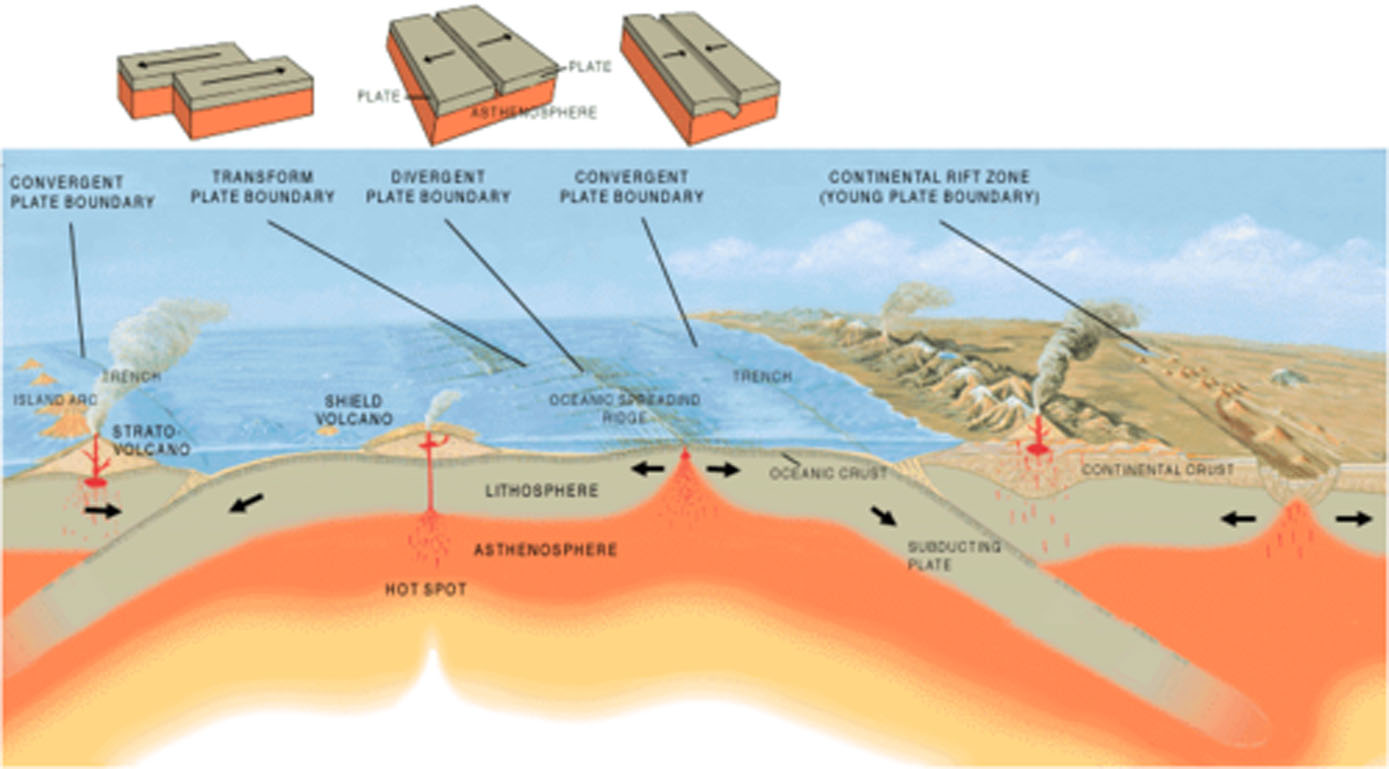 the earth s plate tectonics Earth's constantly moving crust helps keep the climate habitable if circumstances had been only a little different, we could have ended up a barren hothouse.