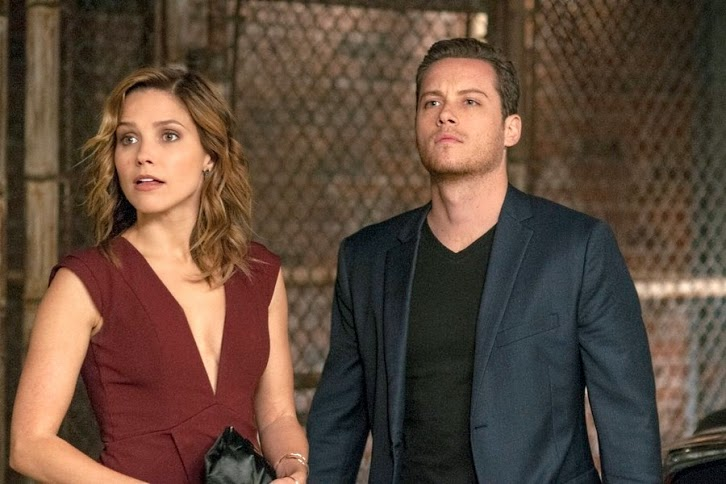Chicago PD - Episode 2.08 -  Assignment of the Year - Promotional Photos