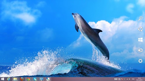 Dolphin Animal Theme For Windows 7 And 8 8.1