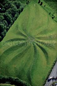 Field with landscaped swirly pattern