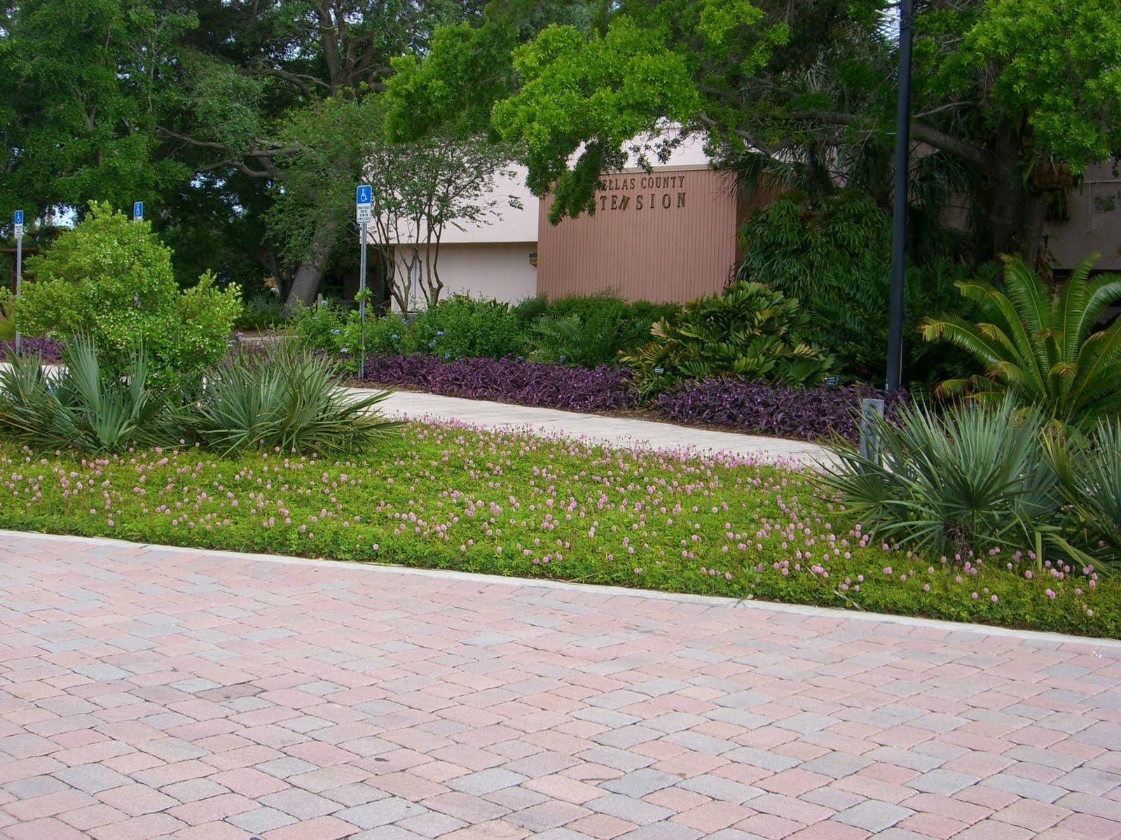 We've Got It Covered :: Randy's Perennials & amp; Jardines de agua | Lawrenceville, GA | 770.822.0676