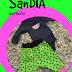 RUMS #26: MANZANAS O...... SANDÍA!