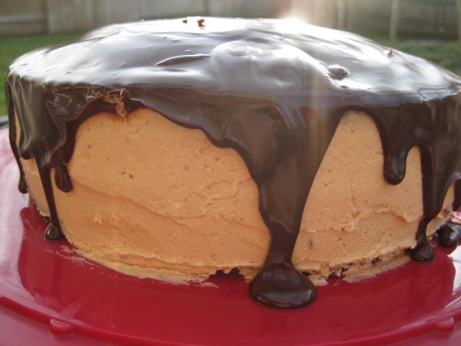 Chocolate Peanut Butter Cake Smitten Kitchen