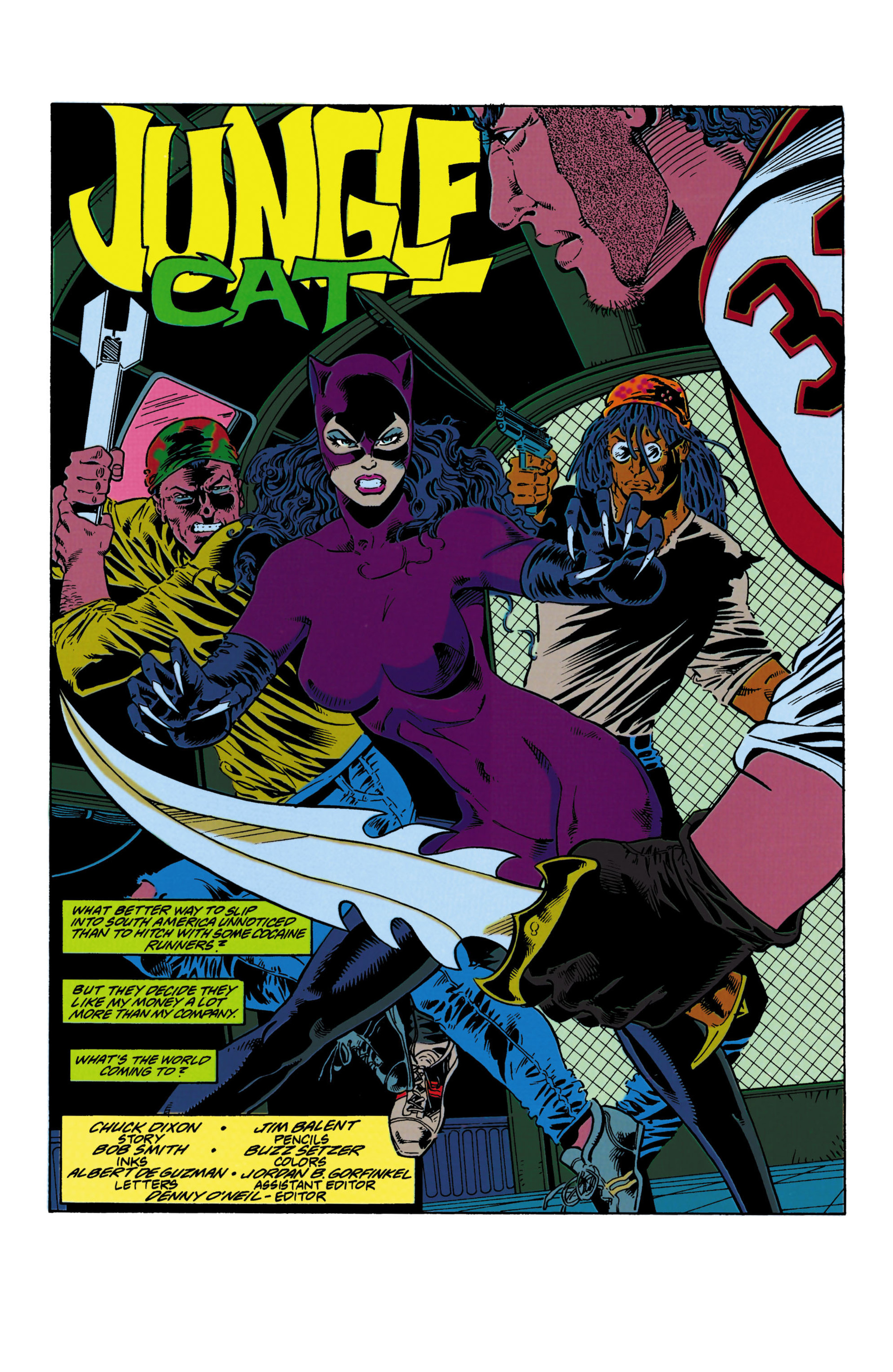 Catwoman (1993) Issue #19 #24 - English 2