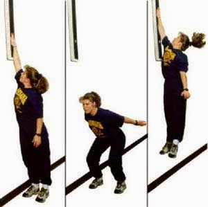 Types Of Exercise To Increase Vertical Jump