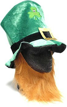 leprechaun hat with ginger beard