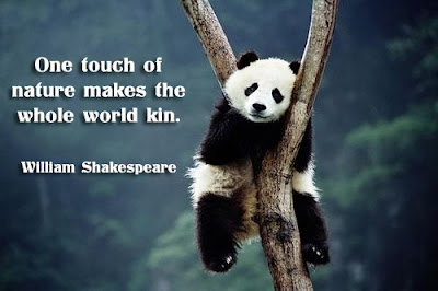 facebook Poste image quotes (One touch of nature makes the whole world kin.)