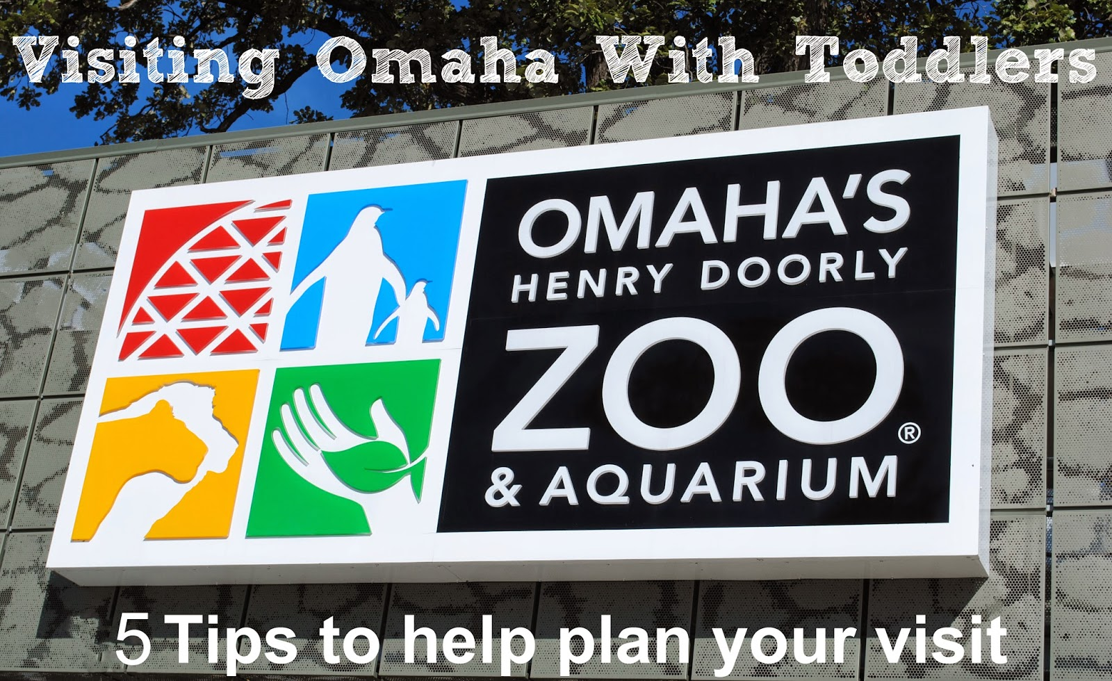 Visiting the Omaha Zoo with Kids: 5 Tips for Making the Most of your Trip